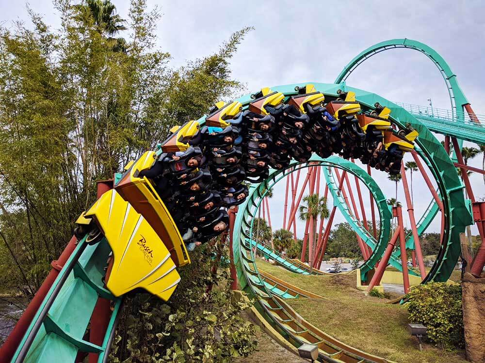 Busch gardens tampa bay blog from undercover tourist for Best day go busch gardens tampa