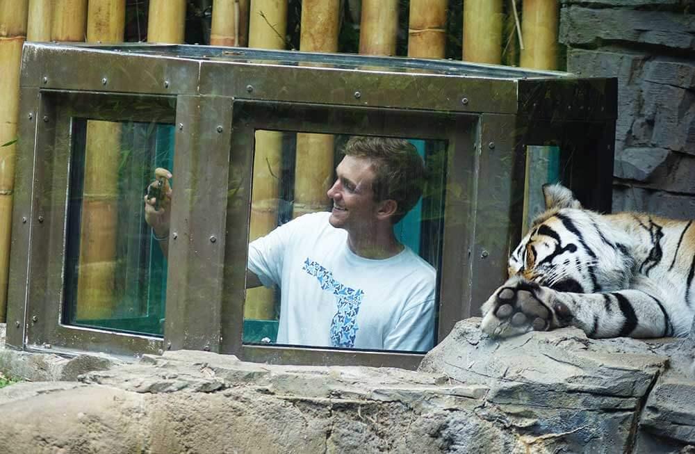 Busch Gardens Tampa - Tiger Selfie
