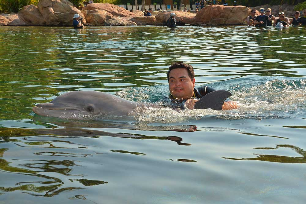 Discovery Cove Dolphin Swim - Ride-Along