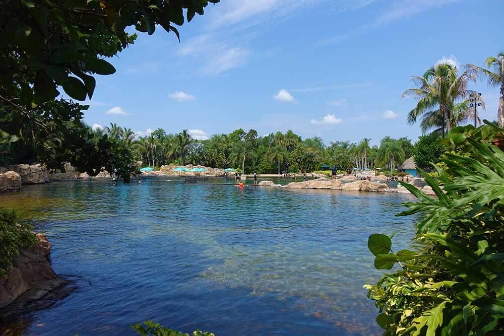 Discovery Cove Dolphin Swim - Lagoon