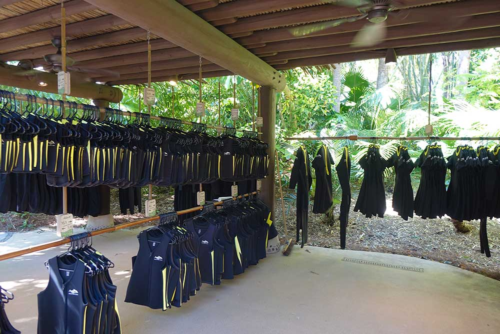 Discovery Cove Dolphin Swim - Wetsuits