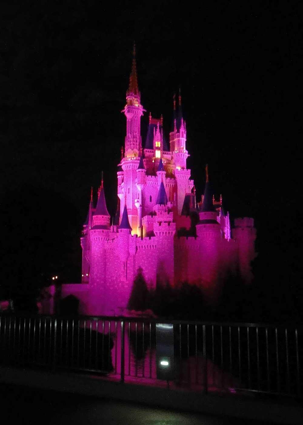 Magic Kingdom Hidden Gems - Kiss Goodnight