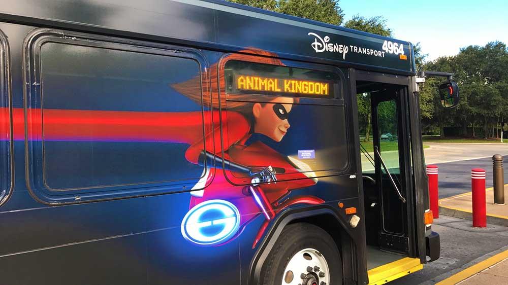 Animal Kingdom Complimentary Transportation - Bus