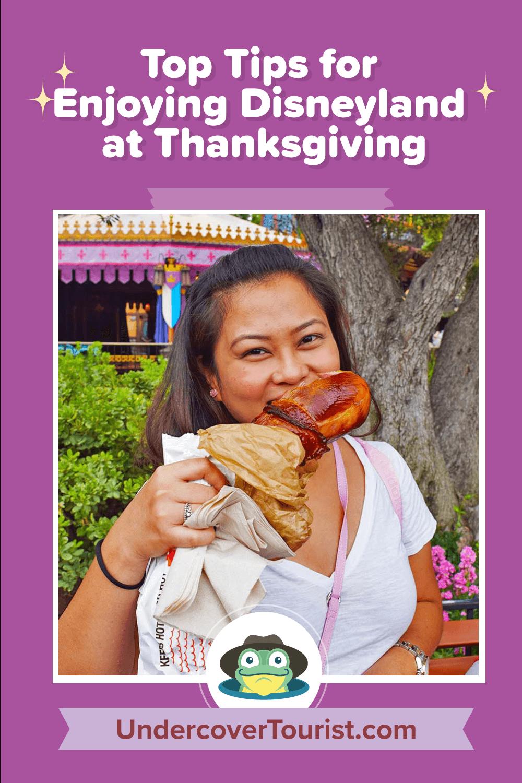 Tips for Enjoying Disneyland at Thanksgiving - Pinterest