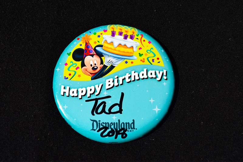 The 15 Best Free (or Almost Free) Things to Do at Disneyland - Button