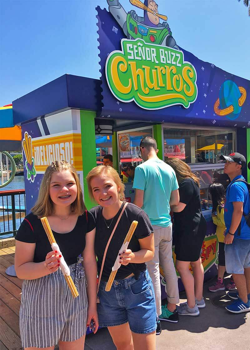 The Best Disneyland Snacks and Where to Find Them - Churro