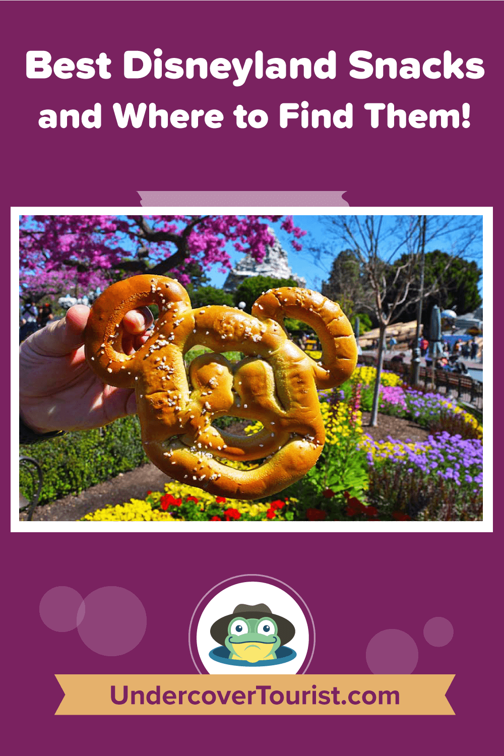 The Best Disneyland Snacks and Where to Find Them - Pinterest