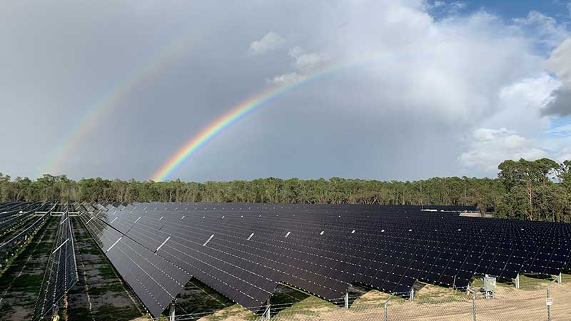 New Solar Facility Live - Walt Disney World