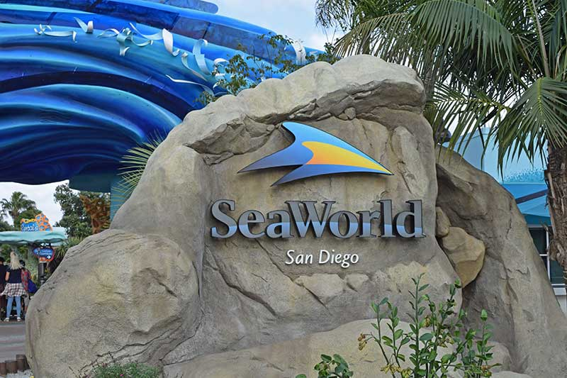 The Best SeaWorld San Diego Shows and Attractions