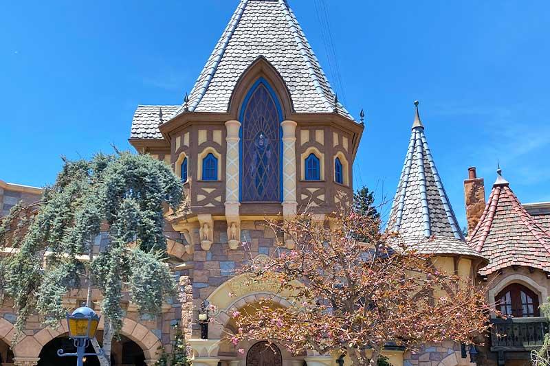 The Frog Family's Top 5 Disneyland Hidden Gems