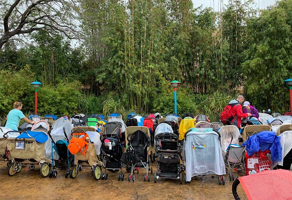 Stroller at Disney World - Strollers at Disney's Animal Kingdom