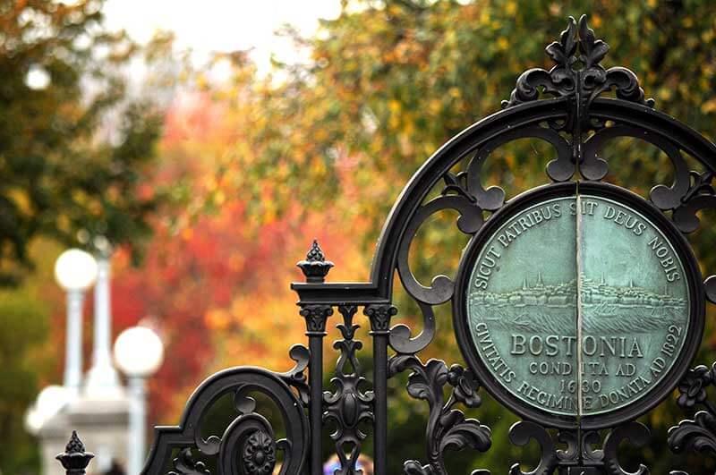 Tips for Visiting Boston with Kids - Boston Public Garden