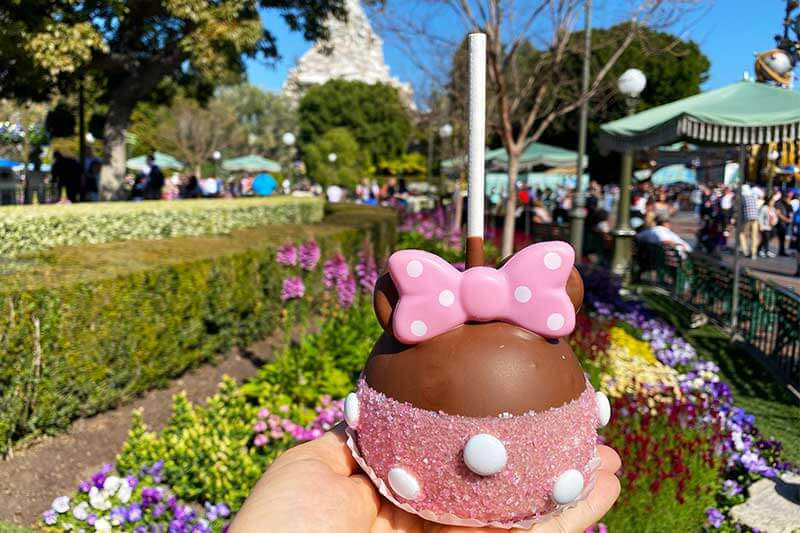 A Disneyland Caramel Apple for Every Season
