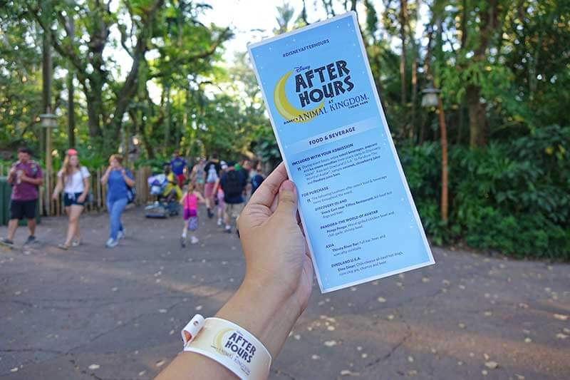 How to Make the Most Out of Disney After Hours Events