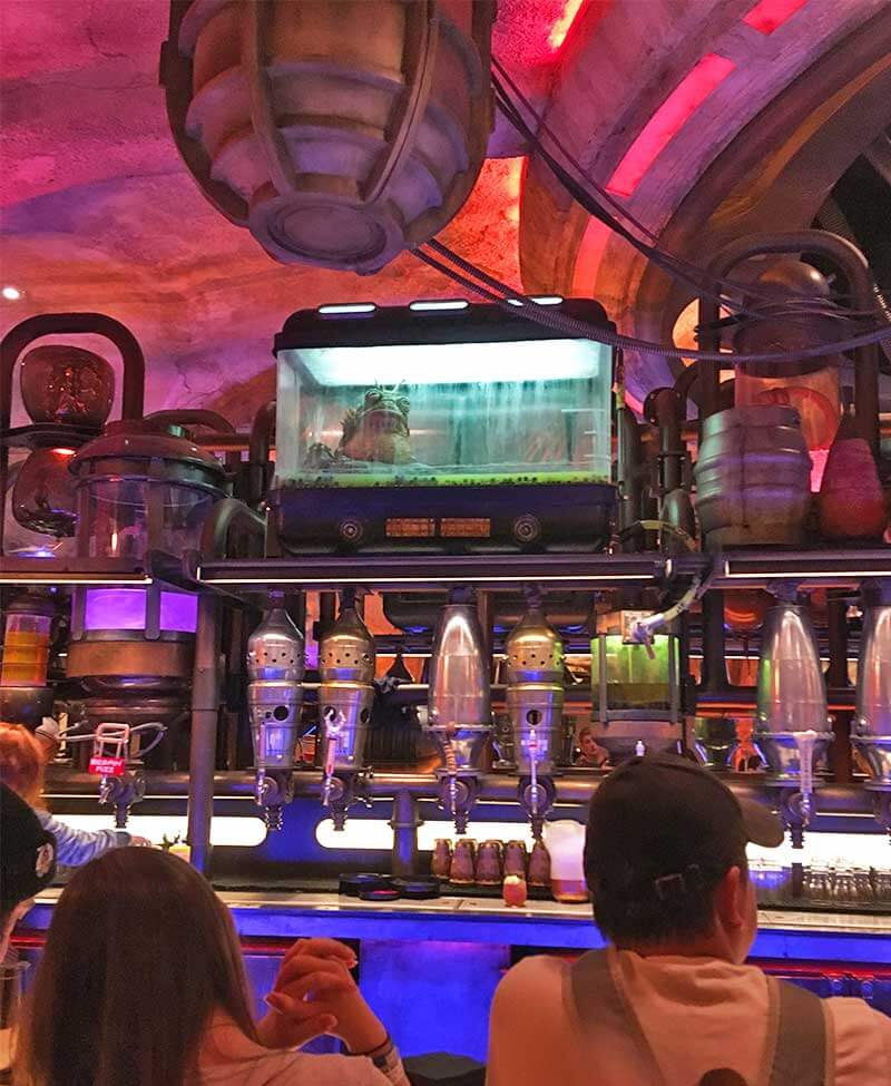 How to Make Reservations at Oga's Cantina Inside Disneyland