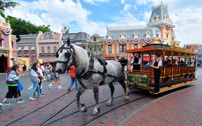 Bert the Horse at Disneyland Resort