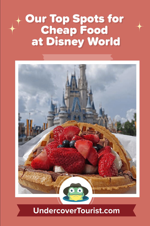 Cheap Food at Disney World