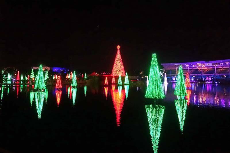 SeaWorld Christmas Celebration - Sea of Trees