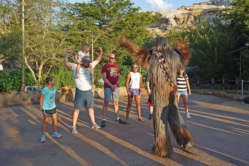 Orlando Theme Parks by Age Group - Chewbacca Interaction