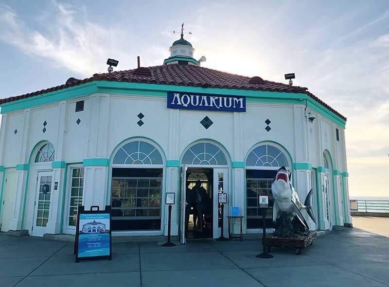The Roadhouse Aquarium - Manhattan Beach with Kids