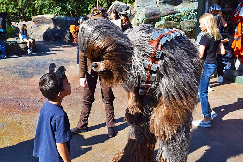 Best Time to Visit Disney World in 2020 - Star Wars: Galaxy's Edge