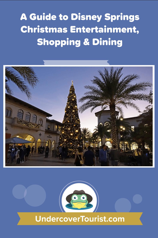Disney Springs Christmas - Pinterest
