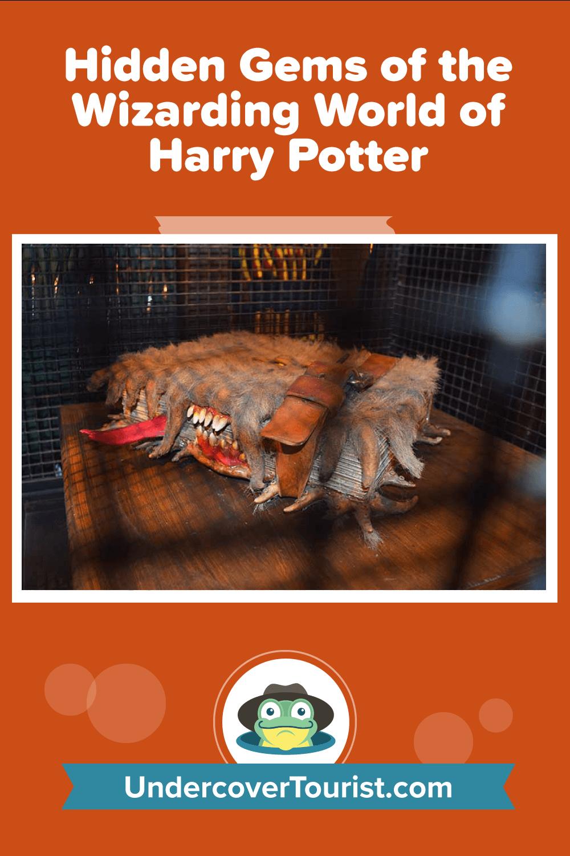 Hidden Gems of The Wizarding World of Harry Potter - Pinterest