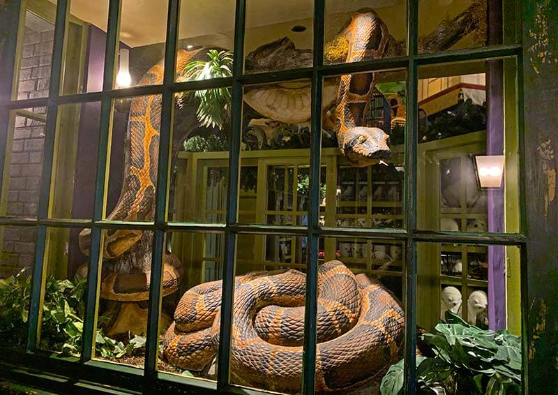 Hidden Gems of the Wizarding World of Harry Potter at Universal Orlando Resort