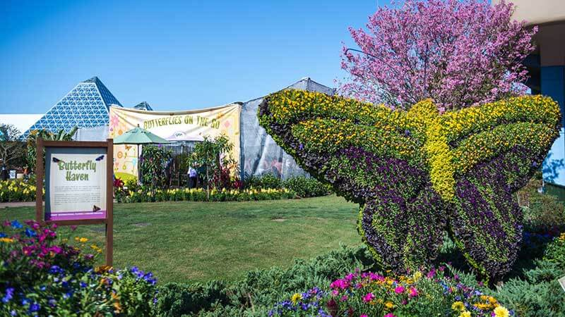 Epcot International Flower and Garden Festival - Garden Rocks Lineup 2020