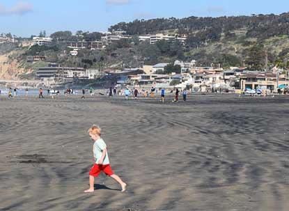 ~Toadally~ Terrific Family-Friendly Beaches in San Diego