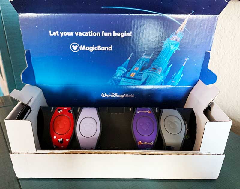 Disney FastPass+ Frequently Asked Questions