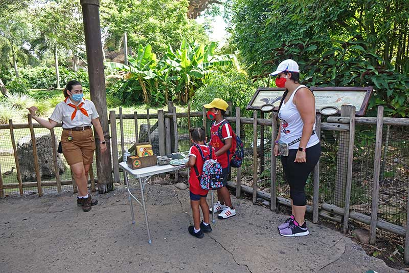 What's It Like to Visit Disney's Animal Kingdom? What You Need to Know
