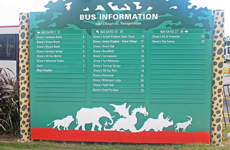 The Expert Guide to Disney's Animal Kingdom Transportation