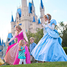 Walt Disney World Resort Quick Start Guide