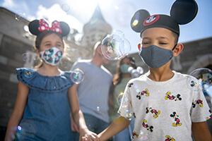 3-Day Disney Theme Park Ticket with Park Hopper® Plus Option