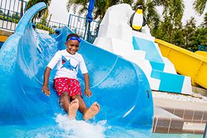 1-Day LEGOLAND Florida + FREE Water Park (PROMO)