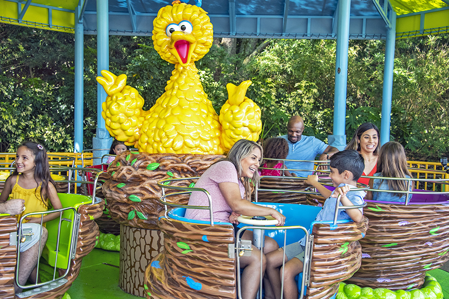 Big Bird's Twirl 'N' Whirl