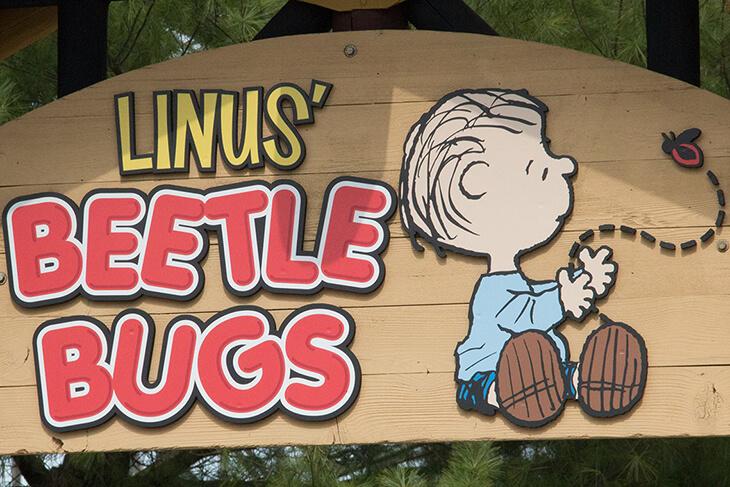 Linus' Beetle Bugs