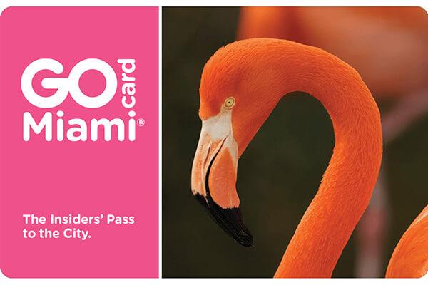 Go Miami Multi Attraction Pass