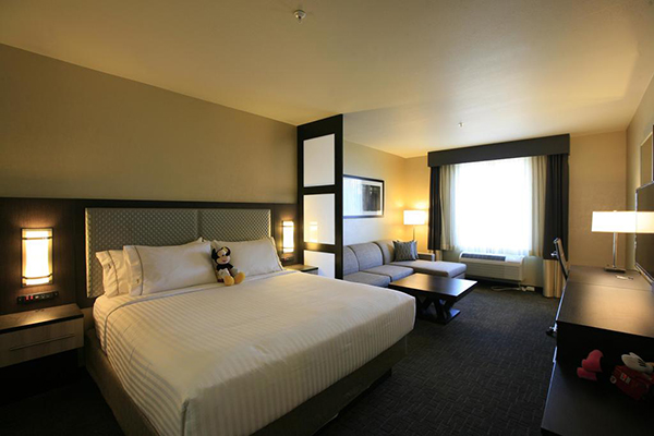 Holiday Inn Express And Suites Anaheim Resort Area Los