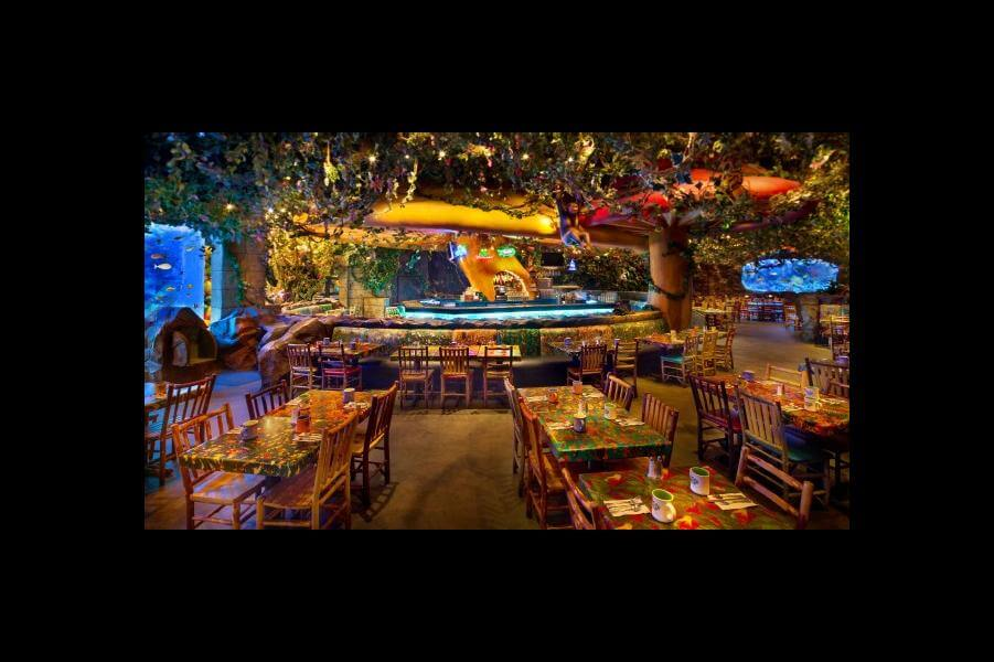 Rainforest Cafe® at Disney's Animal Kingdom