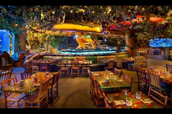 Discount Tickets For Rainforest Cafe