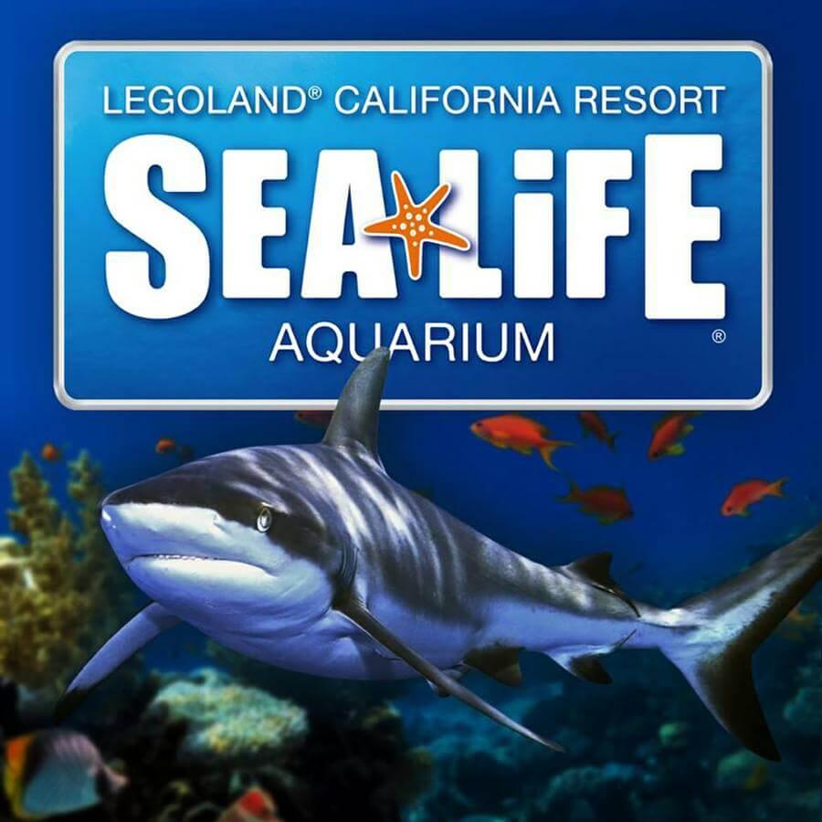 sea aquarium legoland california discount tickets