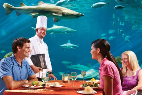 Sharks Underwater Grill® and Bar