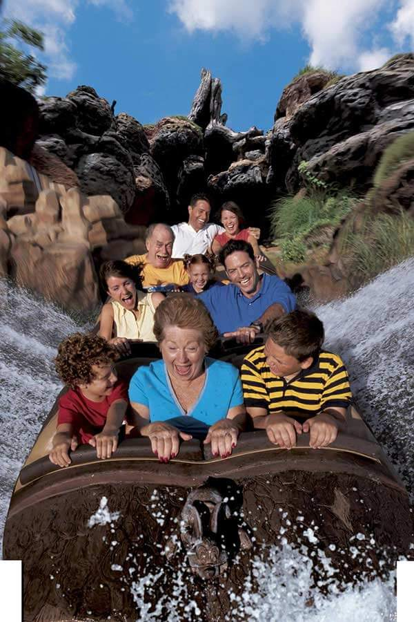 Splash Mountain® Attraction