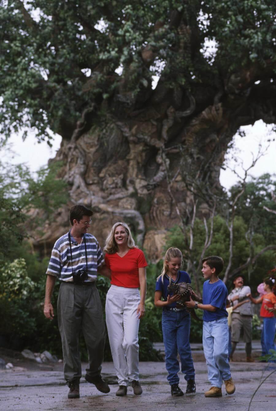 Tree of Life®
