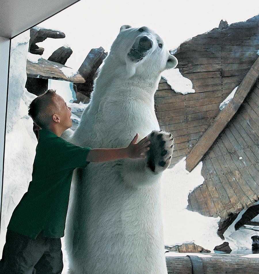 Wild Arctic® Ride