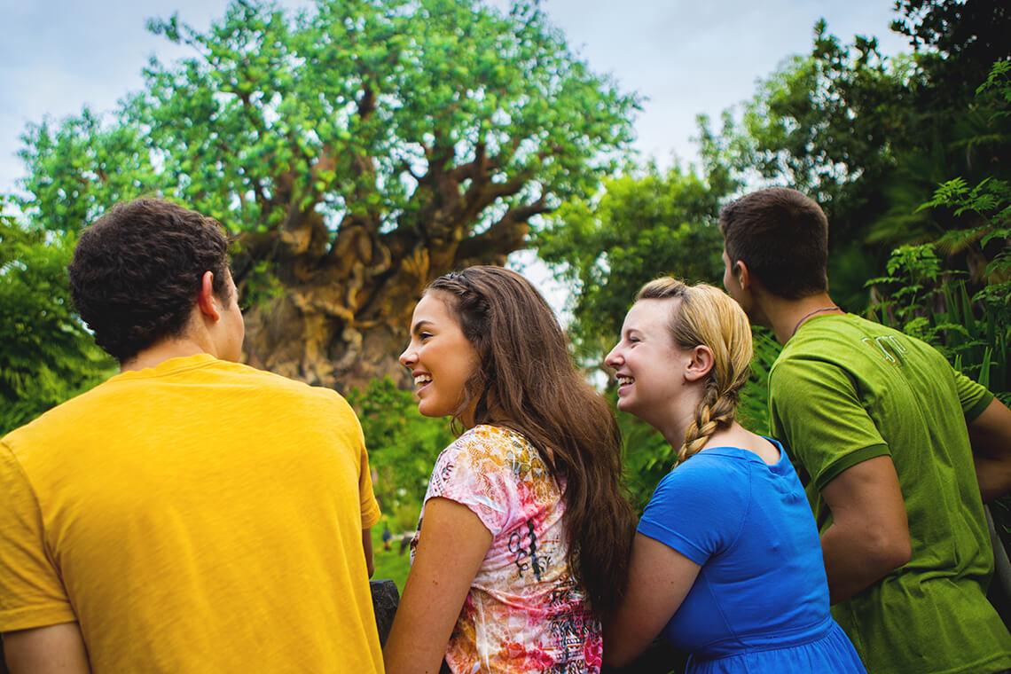 1-Day Magic Your Way Ticket - Regular (Epcot or Disney's Hollywood Studios or Disney's Animal Kingdom)