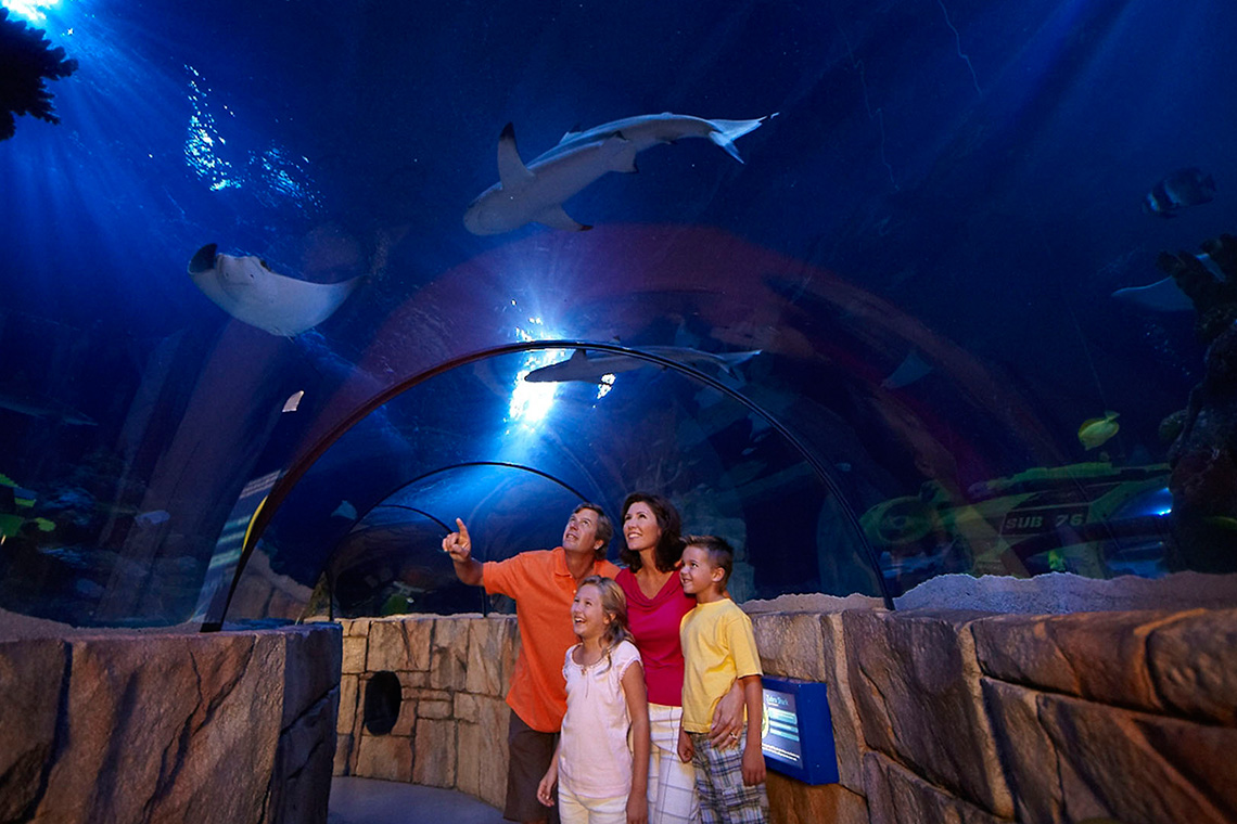 LEGOLAND California Amp SEA LIFE Aquarium 1 Day Hopper