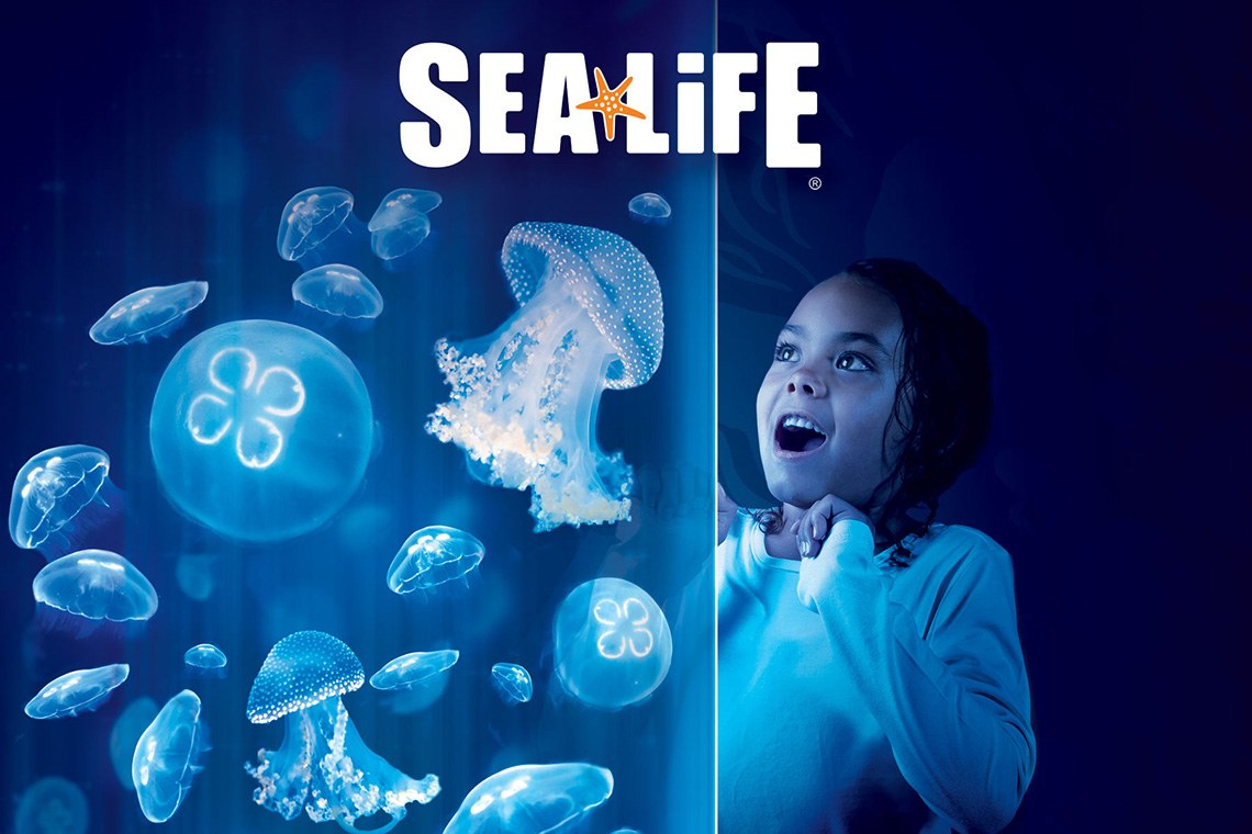 1-Day LEGOLAND California & SEA LIFE Aquarium Hopper + 2nd Day FREE